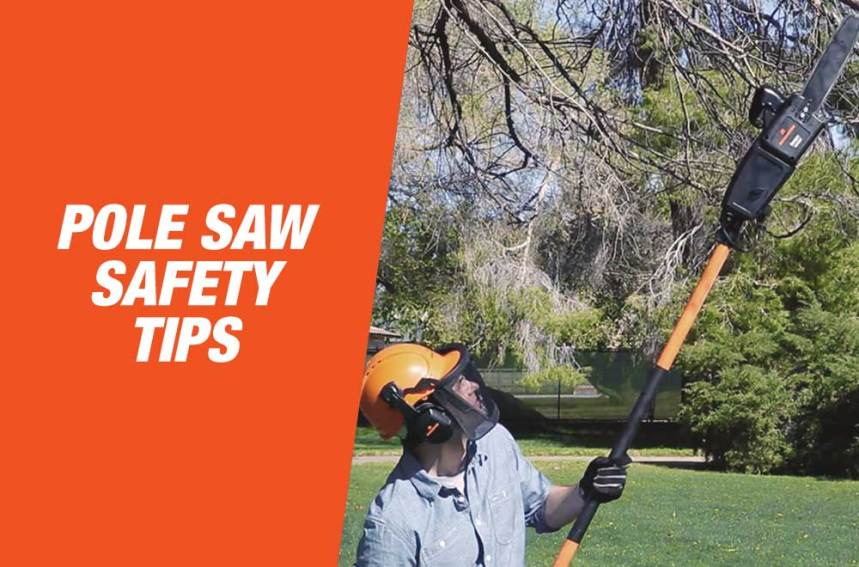 Pole Saw Safety Tips
