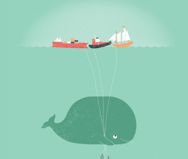 Blue Whale Iphone S Wallpapers Funny Whale Iphone S Wallpapers