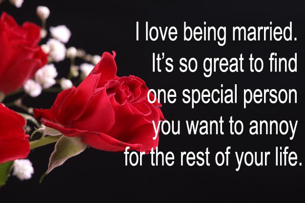 50 Funny Valentines Day Quotes Freshmorningquotes