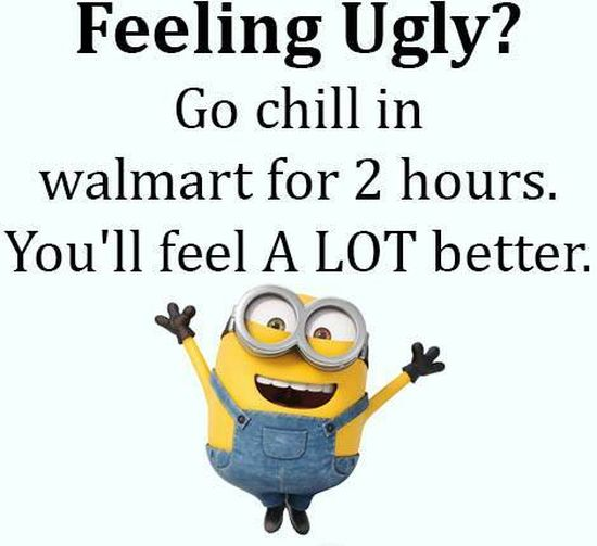 60 Funny Minion Quotes with Pictures Freshmorningquotes