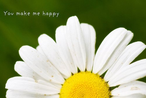 30 You Make Me Happy Quotes Freshmorningquotes