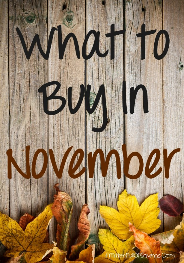 What to buy in November
