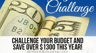 52 week challenge, 52 week money saving challenge