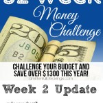 52 week challenge, money saving ideas