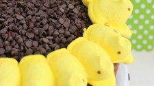 Get your Peep game on with this cute and fun Easter treat! Learn how to make Peeps Sunflower Cake here!