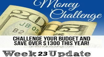 52 Week Money Challenge: Don't Call The Experts