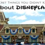 5 Secret Things I Bet You Didn't Know About Disneyland