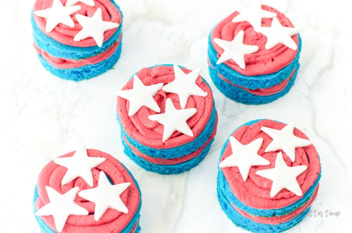 Red White and Blue Desserts Mini Cakes Recipe