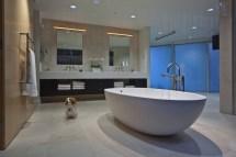 Modern Home Interior Design Bathroom
