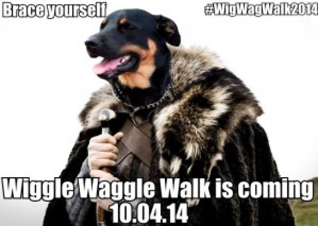 Wiggle Waggle Walk Save the Date