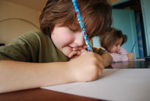 FresYes Families: Common Sense Thoughts on Common Core Standards