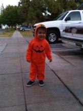 A 2 year old pumpkin!