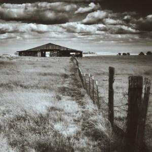 black and white barn