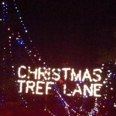 Xmas Tree Lane 4. Christmas ...