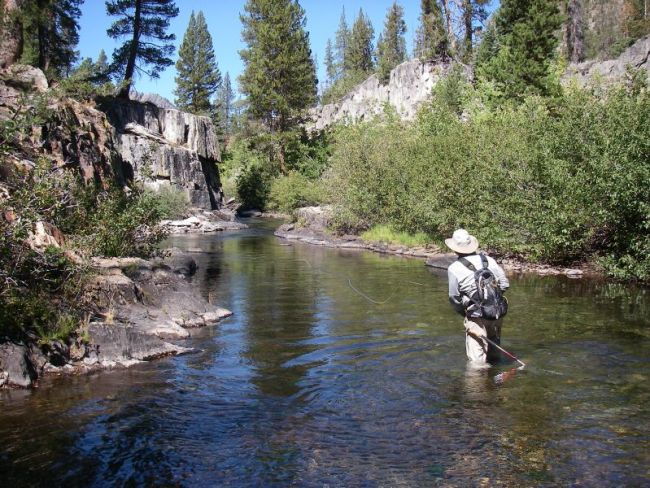 fly fishing on the san joaquin-