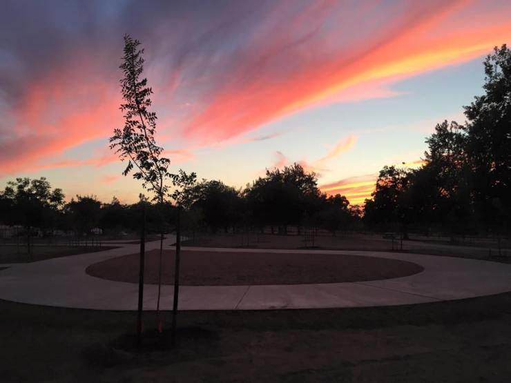 The Art of Life Healing Garden at Woodward Park.