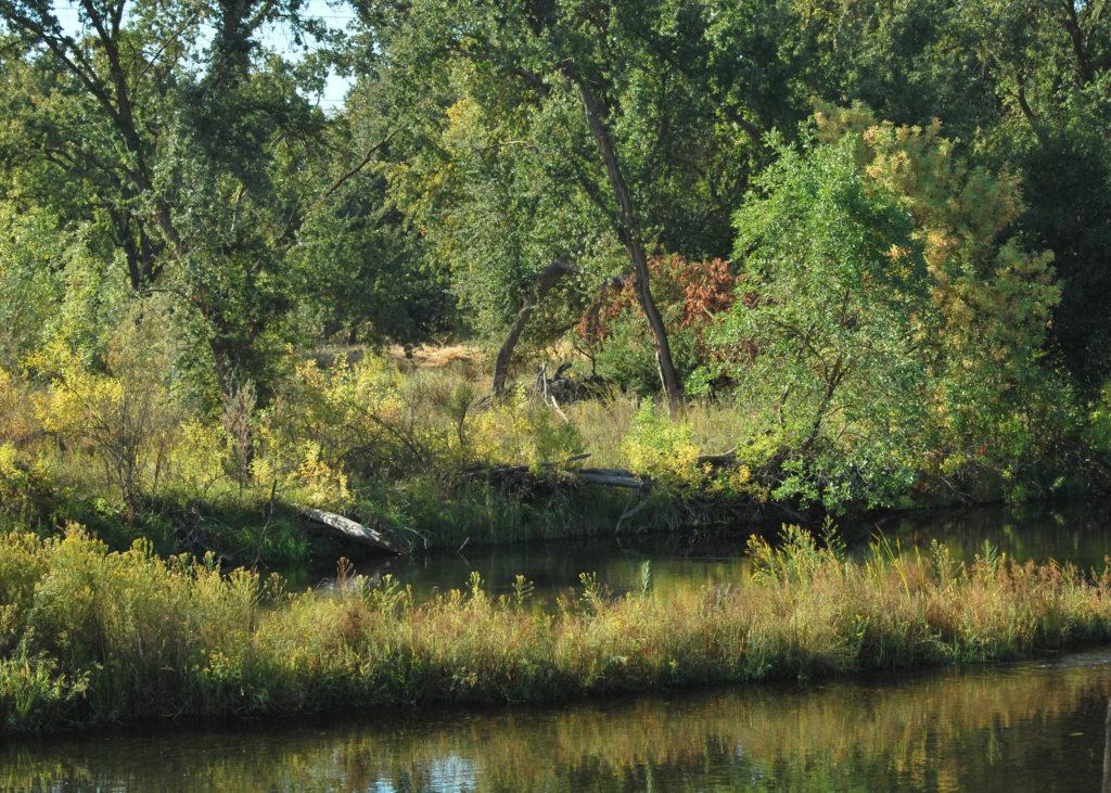 River Parkway Trust