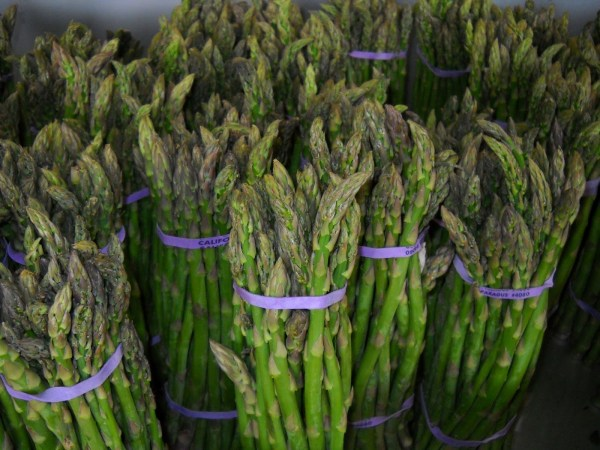 Asparagus at the farmers market