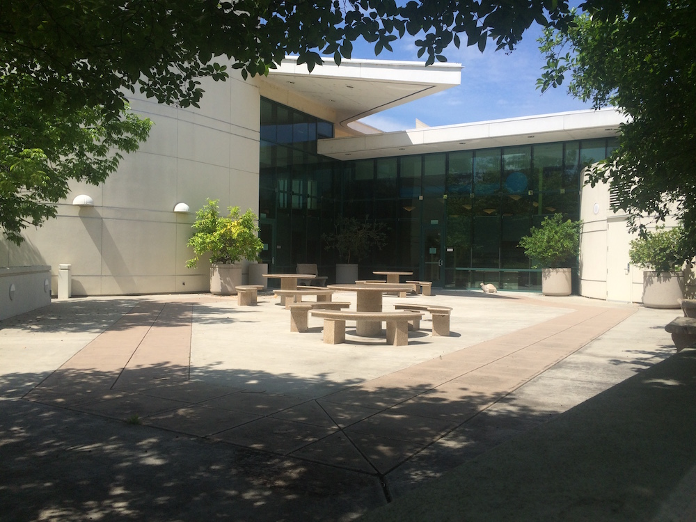 The Woodward Park Library
