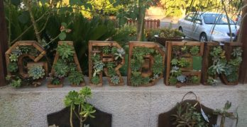 Kileen's Garden Boutique Makes Living Art Out of Succulents