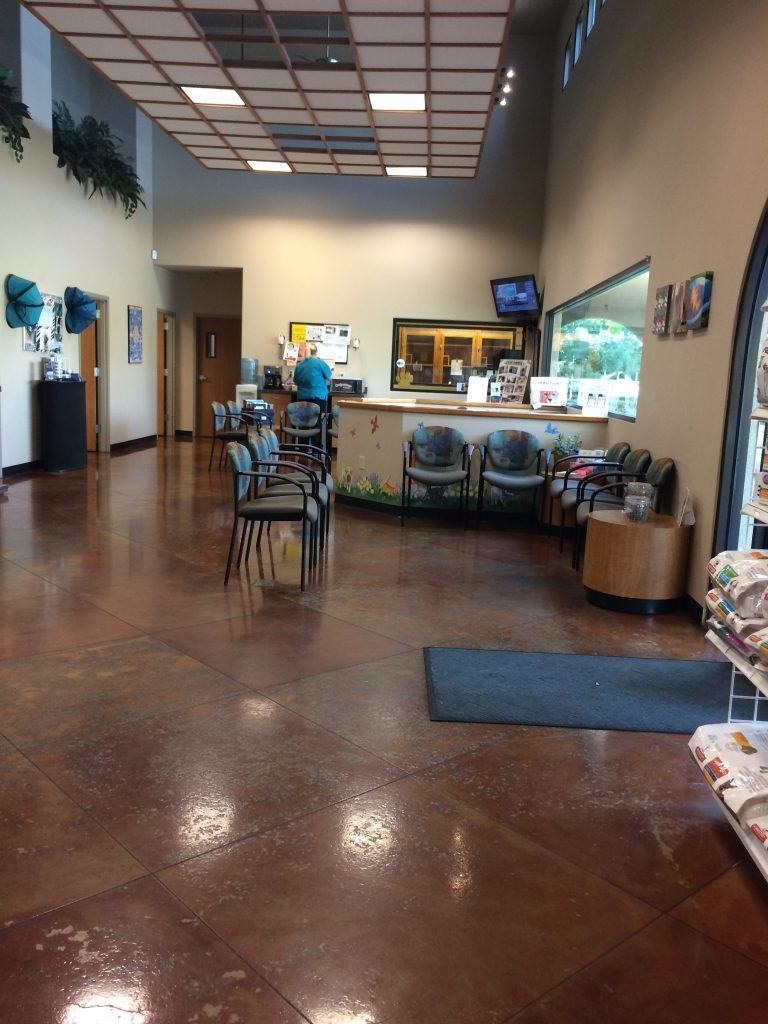 Pet Medical Center and Spa Lobby