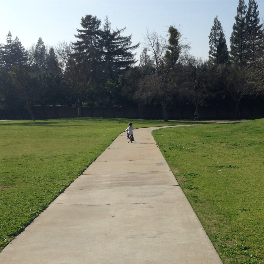 The paths at Keith Tice Park