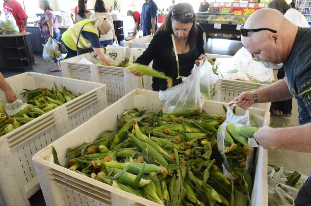 fresno state corn on sale