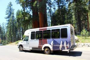 Take advantage of the Sequoia Shuttle before summer ends