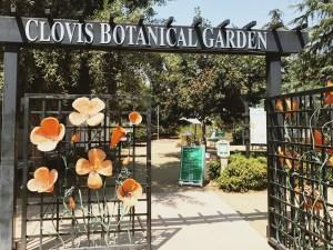 """Twilight Thursdays"" bring music to Clovis Botanical Garden"