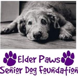 Elder Paws Foundation