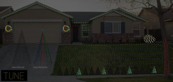 Davis Family Light Show