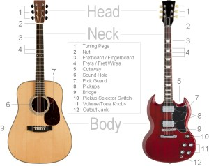 Parts of the Guitar  Clearest Guitar Parts Diagram & Detailed Breakdown