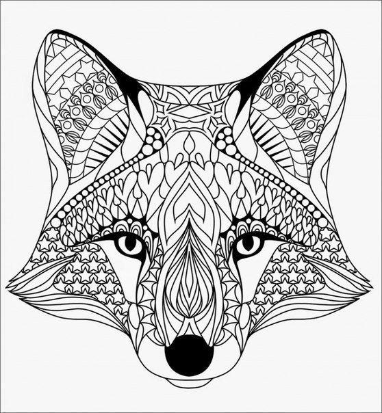 Tiere Ausmalbilder Kostenlos Malvorlagen Windowcolor zum
