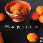 Marillen (Aprikosen) Joghurt Eis, kalorienarm – vegetarisch