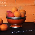 Marillen (Aprikosen)-Joghurt Eis – vegetarisch