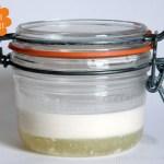 Experiment: Mandelmilch-Joghurt