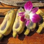 Himbeer Bananen Topfencreme – vegetarisch