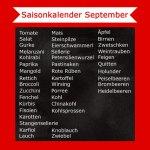September Saisonkalender – Was hat im September Saison