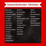 Saisonkalender Oktober– Was hat Saison?