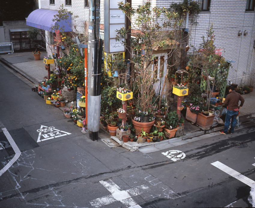 Freunde von Freunden - Makoto Azuma - Artista Flor, loja, Minami Aoyama, Tóquio - http://www.freundevonfreunden.com/slider/azuma-makoto/