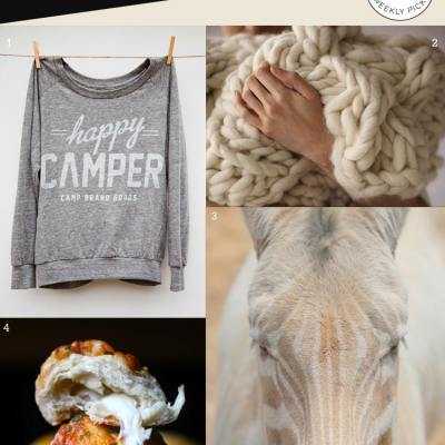 {Pin Picks} Happy Camper