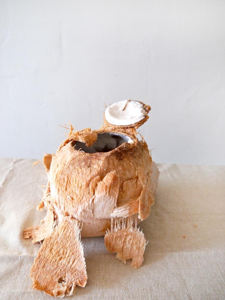 Coconut-Date-Breakfast-Smoothie-1