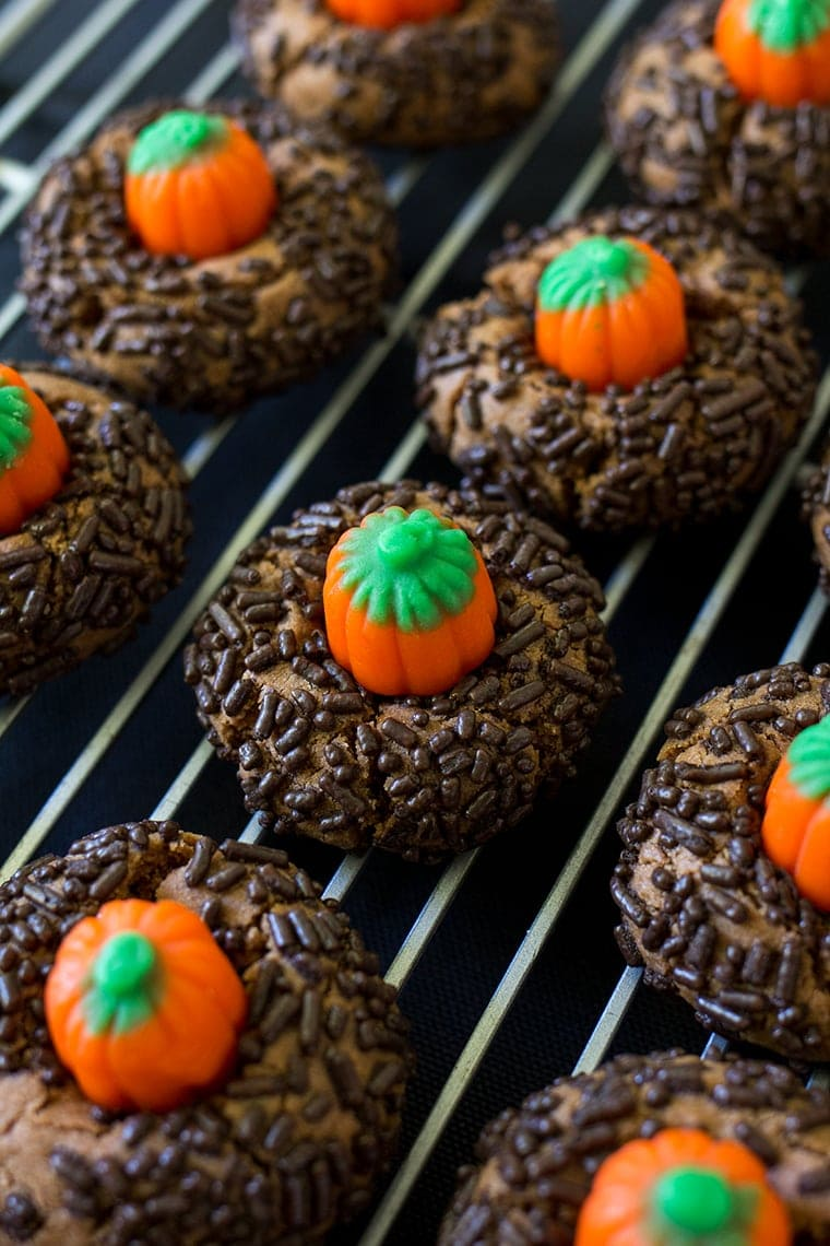 Chocolate Peanut Butter Pumpkin Blossoms are the perfect Halloween cookie. Classic peanut butter blossom cookies with a chocolate twist and a mallowcream pumpkin on top. #peanutbutter #cookie #halloween #halloweencookie #peanutbutterblossom #Pumpkincookie