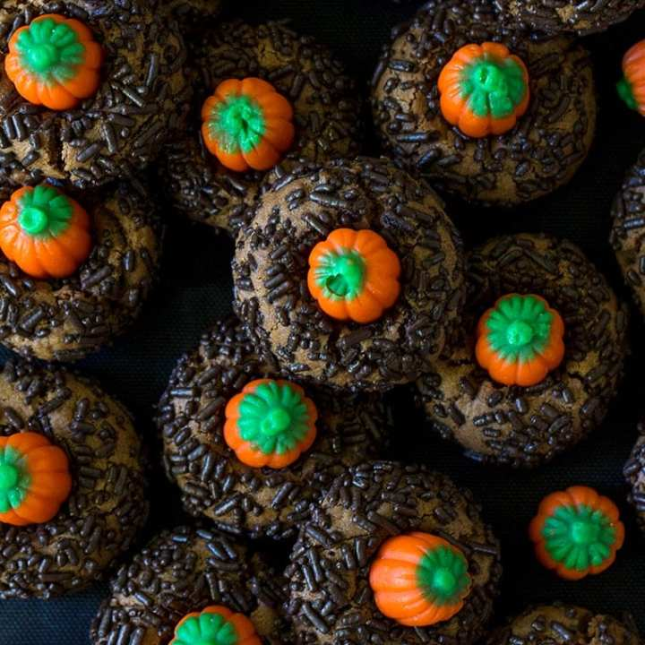 Chocolate Peanut Butter Pumpkin Blossoms