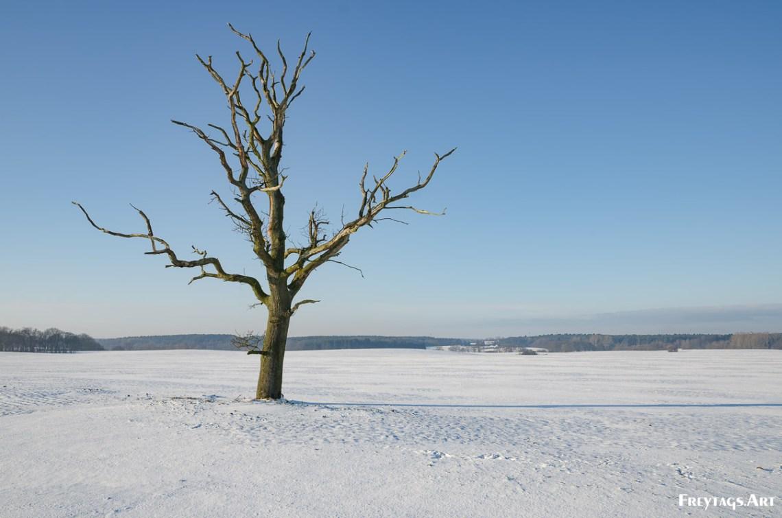 Was taken in Grevesmühlen, , , 12.12.2012 14:33:37