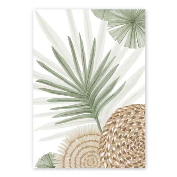 Calamus Palm II