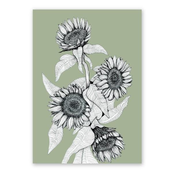 Sunflower Bunch (Various Colours)