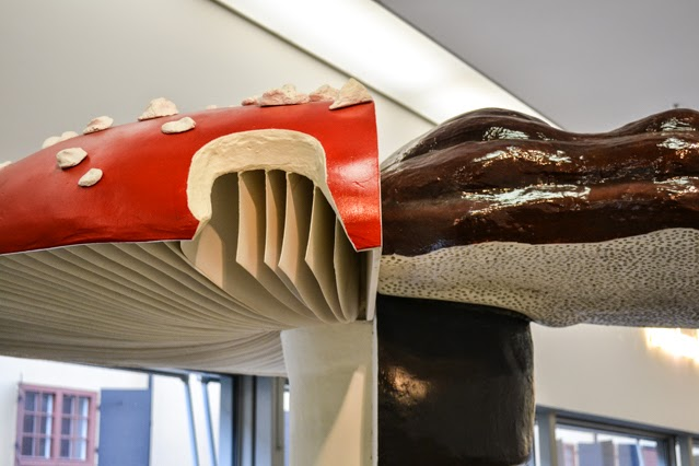 Carsten Höller cross-section mushroom