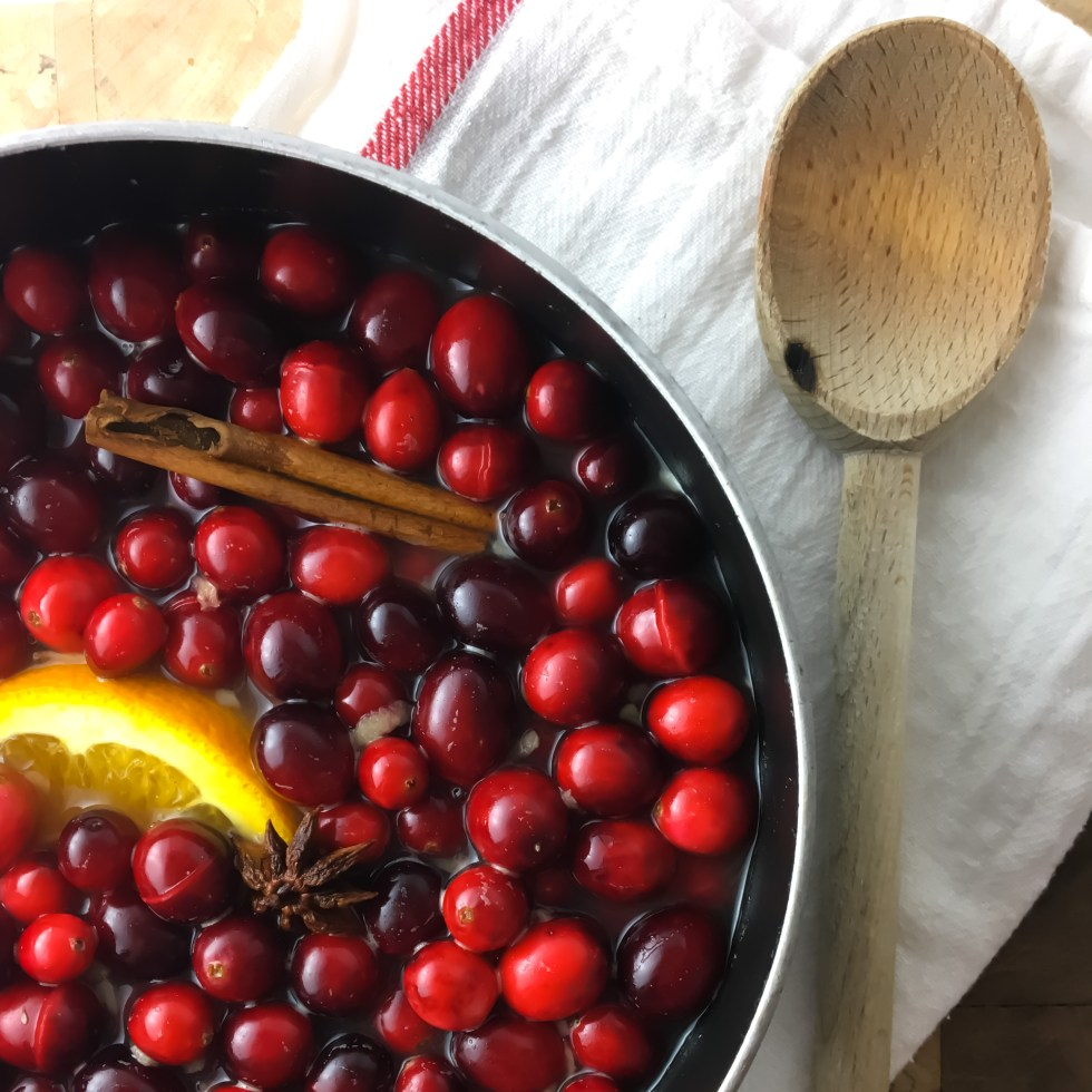 Cranberry Ginger Sauce - Fridge to Fork