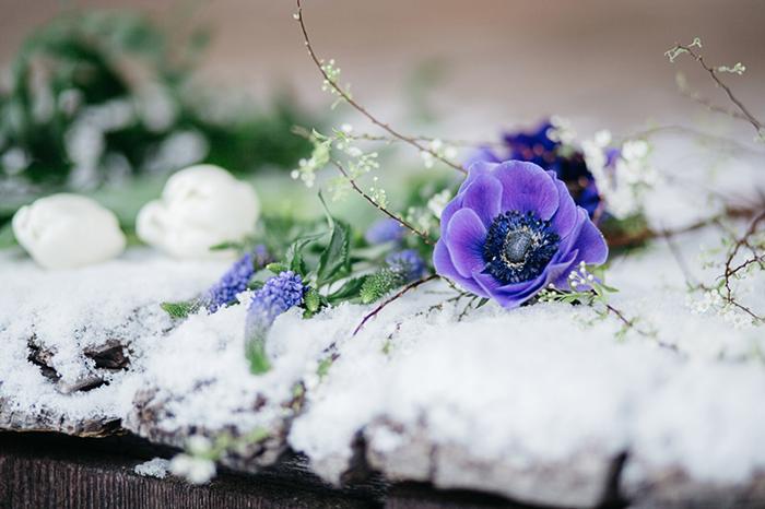 Blaue Anemone fr den Brautstrau